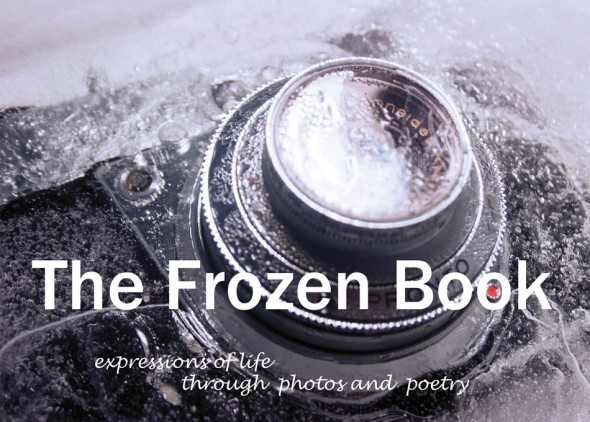 The Frozen Book by Emmanuela dos Santos Dias and Flavio Rosa