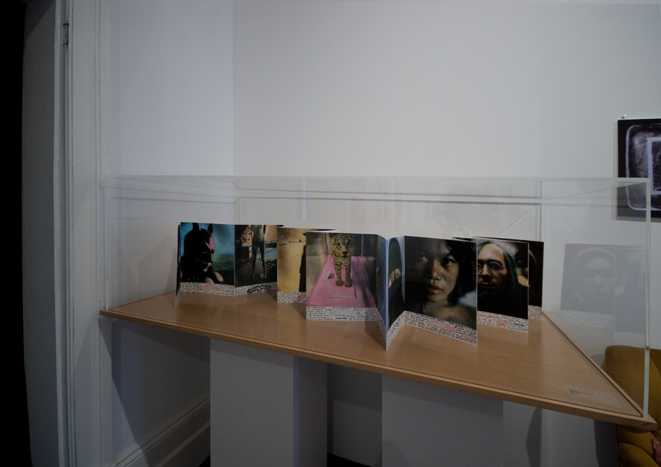 Display case for sale -- acrylic top with routed mdf base $609 gst inc